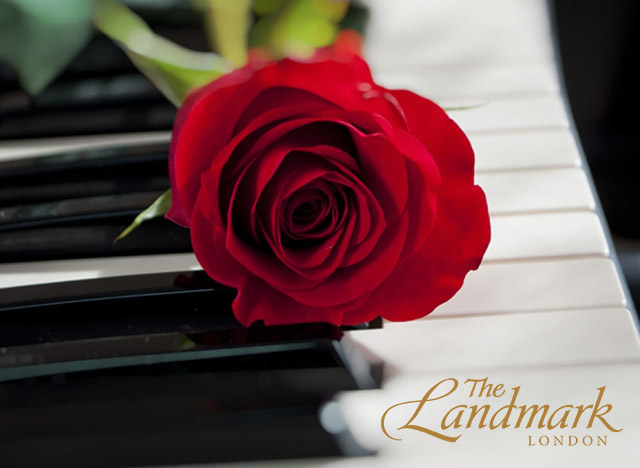 Red_rose_on_piano_31
